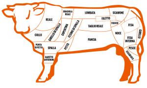 tagli-carne-bovina-infografica