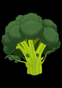 kisspng-broccoli-drawing-pdf-cauliflower-lettuce-5b083753b08557.747965711527265107723
