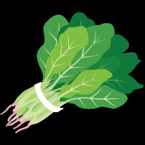 kisspng-spinach-food-salad-juice-clip-art-5ae6d2cf186ba2.1670510615250766871001